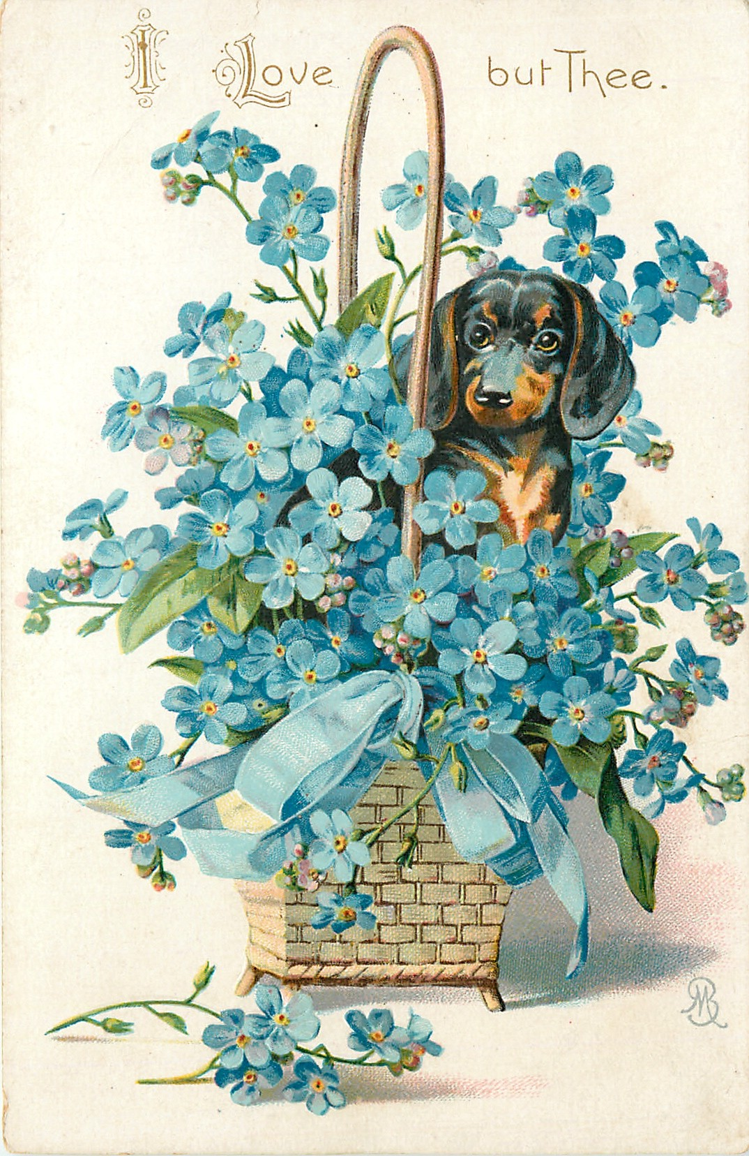 I LOVE BUT THEE Dachshund In Basket Of Forget Me Nots
