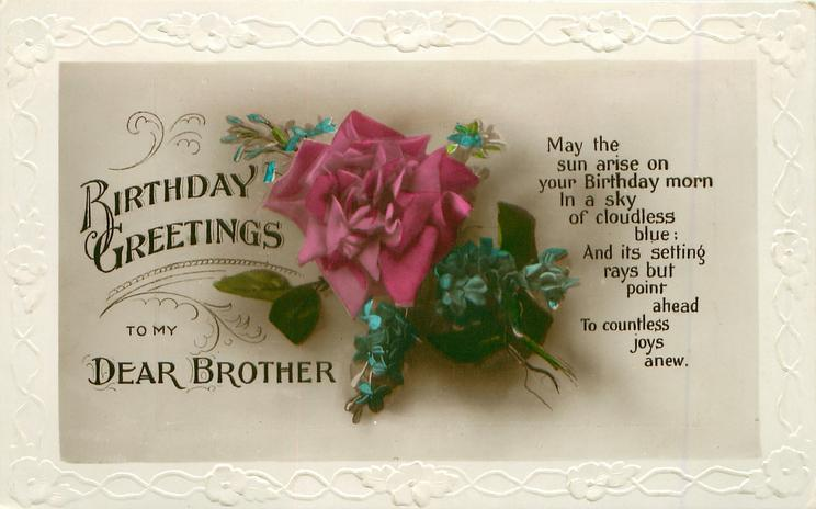 BIRTHDAY GREETINGS TO MY DEAR BROTHER Single Pink Rose