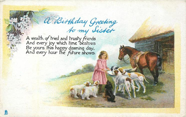 A BIRTHDAY GREETING TO MY SISTER Girl Feeding Dogs Horse