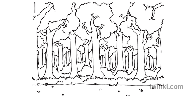 Forest Path Side View Scene Background Fairy Tale Fox and