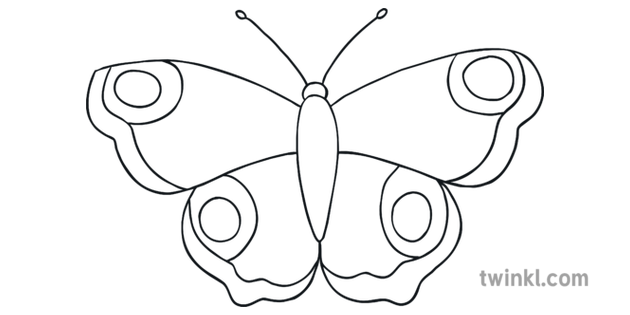 How To Draw A Butterfly Step 5 Art and Design Insects