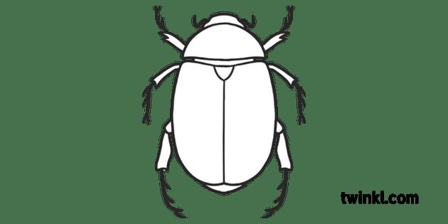 Scarab Beetle Ancient Egypt Sun God Khepri KS1 Black and