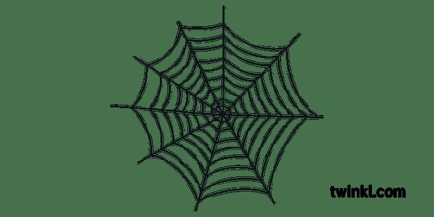 Spider Web Arachnid Cobweb Fly Catcher Dusty Old KS1