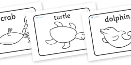Lesson Plan Ideas KS2 to Support Teaching on Commotion In