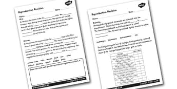 KS2 Science Growth and Reproduction Resources, Sex