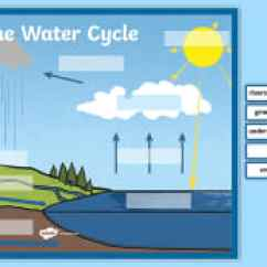 Labelled Diagram Of Water Cycle Pine Tree Ks2 Geography Resources The Large Display Labelling Activity