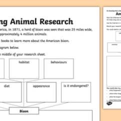 Use Animal Research Diagram Of The Knee And Ligaments Amazing Worksheet Fact A Day