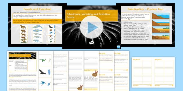 Biology Paper 2 Revision: AQA Inheritance, Variation and Evolution Lesson 9: Fossils
