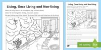 Living, Once Living and Non-Living Worksheet / Activity Sheet