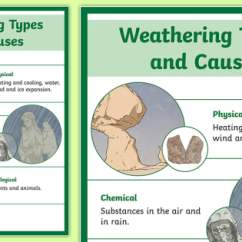 Biological Weathering Diagram Venn With Lines Pdf Types And Causes Display Poster -