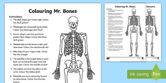 Colouring Mr Bones Worksheet Worksheet Teacher Made