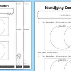 Venn Diagram Math Division Leviton Cat6 Jack Wiring New Identifying Common Factors Worksheet Addition Subtraction Multiplication And Use Diagrams