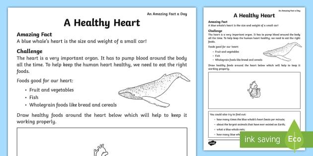 A Healthy Heart Worksheet Worksheet Teacher Made