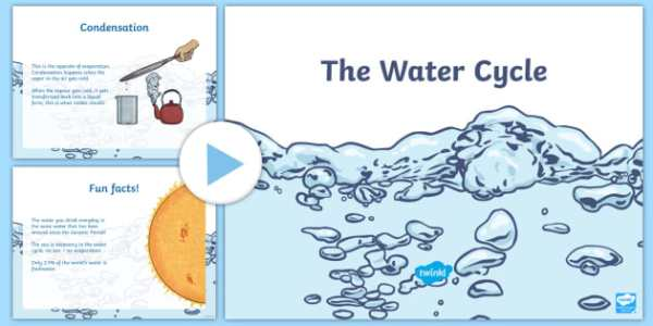 The Water Cycle PowerPoint All About Water water water