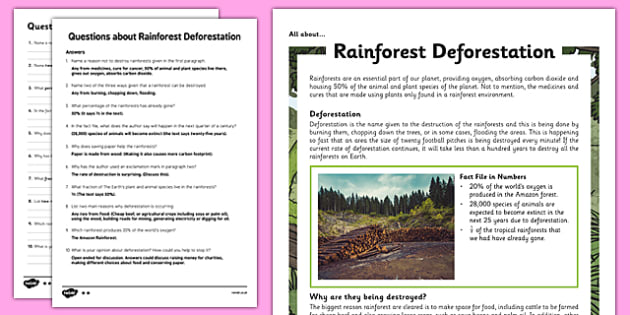 Y5 Rainforest Deforestation Differentiated Reading