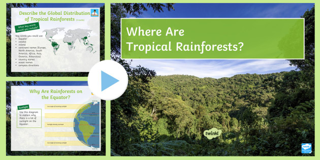 Where Are Tropical Rainforests? PowerPoint