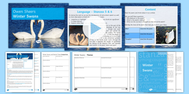 GCSE Poetry Lesson Pack to Support Teaching on 'Winter Swans' by Owen Sheers