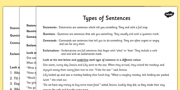 Types Of Sentences Differentiated Activity Worksheet  Esl