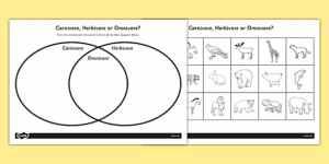 Venn Diagram Worksheet KS1  Omnivore Carnivore or Herbivore Venn Diagram