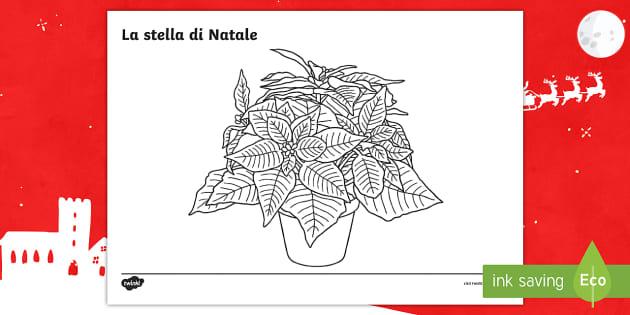 Stella enchantix da stampare e colorare per bambine e tanti altri disegni da colorare e … La Stella Di Natale Fogli Da Colorare Teacher Made
