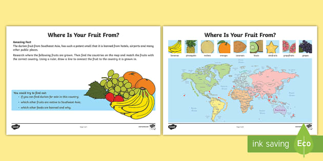 Where Is Your Fruit From Worksheet Worksheet