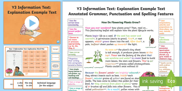 Y3 Information Texts Explanation ModelExample Text  Writing