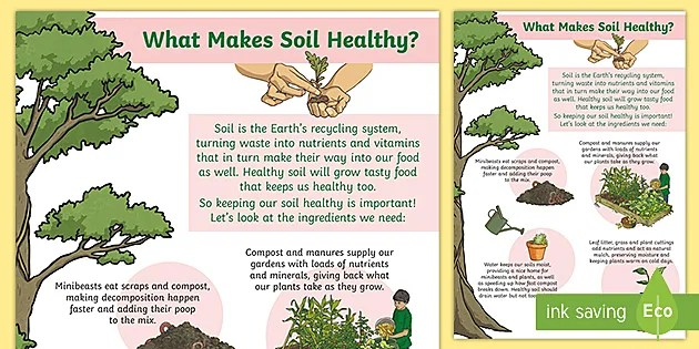 what makes soil healthy display poster
