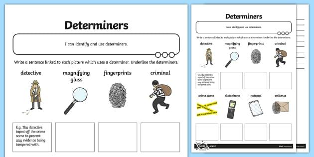 Determiners Application Worksheet Worksheet Teacher Made