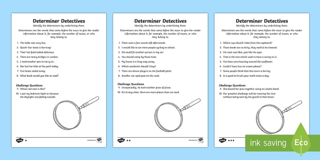 Determiner Detective Worksheets Differentiated