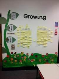 Growing Plants Display, Classroom Display, growing, plants