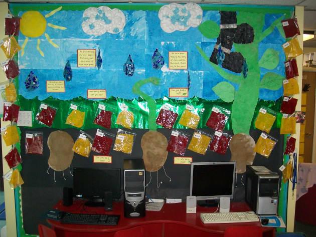 Plants Class Display, class display, Plants, Flowers, Display