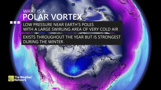 polar vortex definition