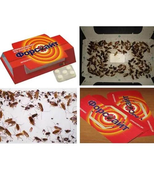 Клеевая ловушка Форсайт для тараканов, с приманкой-привлекателем(Д1-30), фото 3