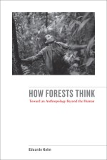 """""""How Forest Think"""""""