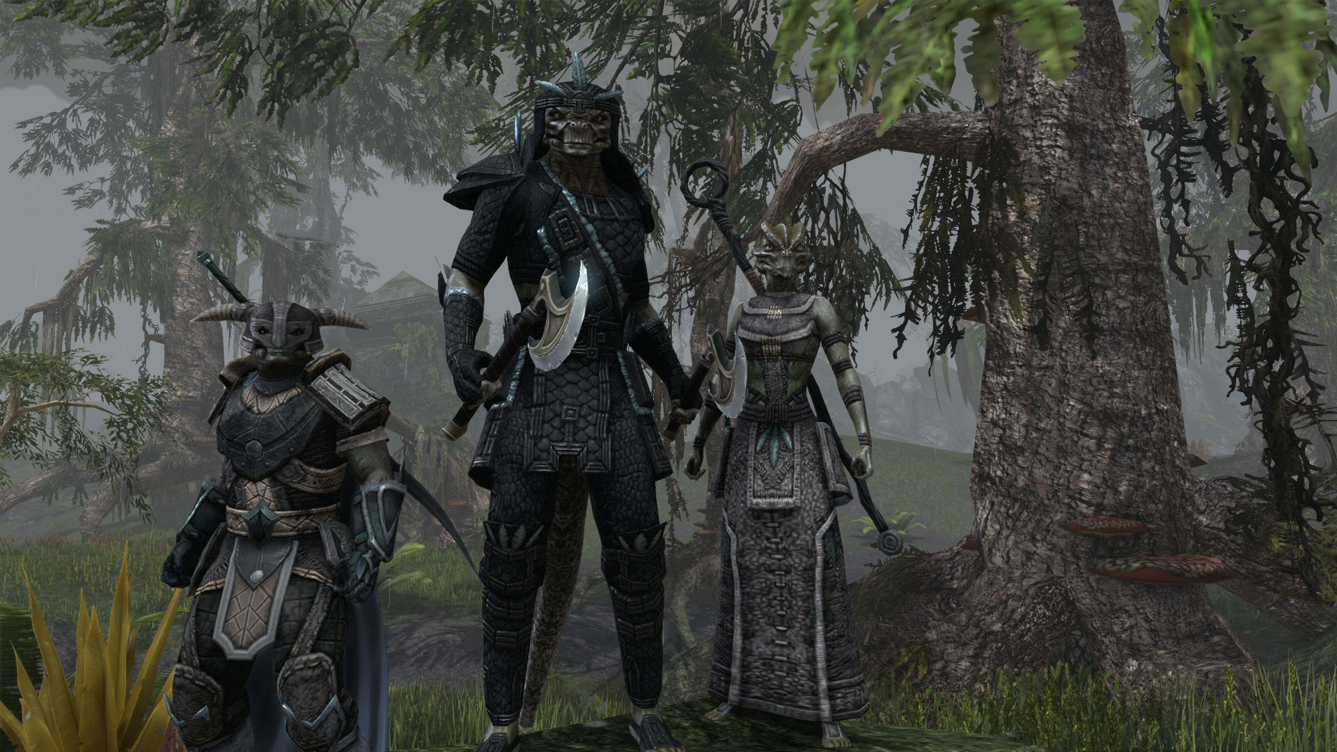 CapesWhy Cant ESo Handle Them Elder Scrolls Online