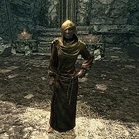 skyrim priestess of arkay