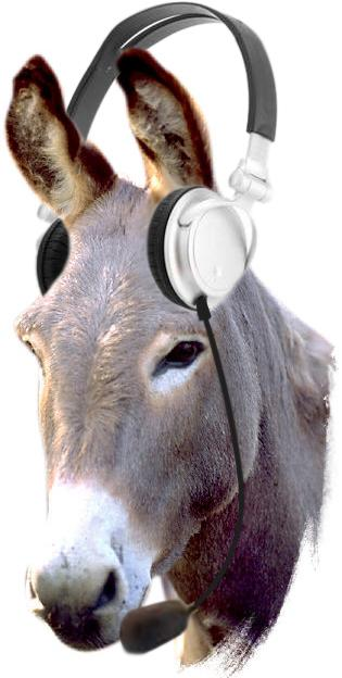 https://i0.wp.com/images.uncyc.org/pt/3/36/Donkeytelemarketing.jpg