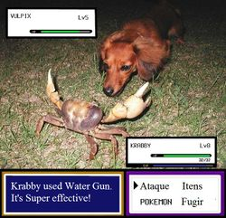 Krabby  Desciclopdia