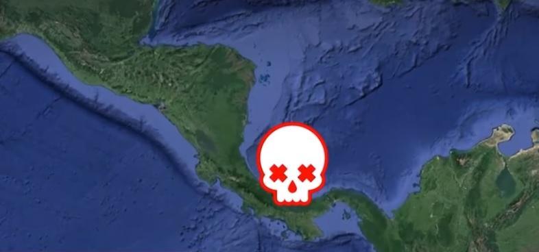 Мертва зона - цепонад 17 тисяч квадратних кілометрів / скріншот відео ТСН