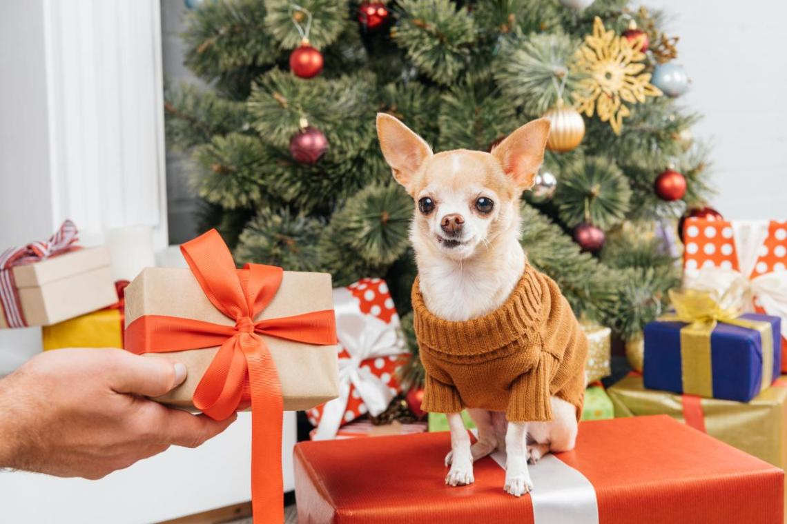 Что подарить детям на Новый год - идеи подарков / фото ua.depositphotos.com