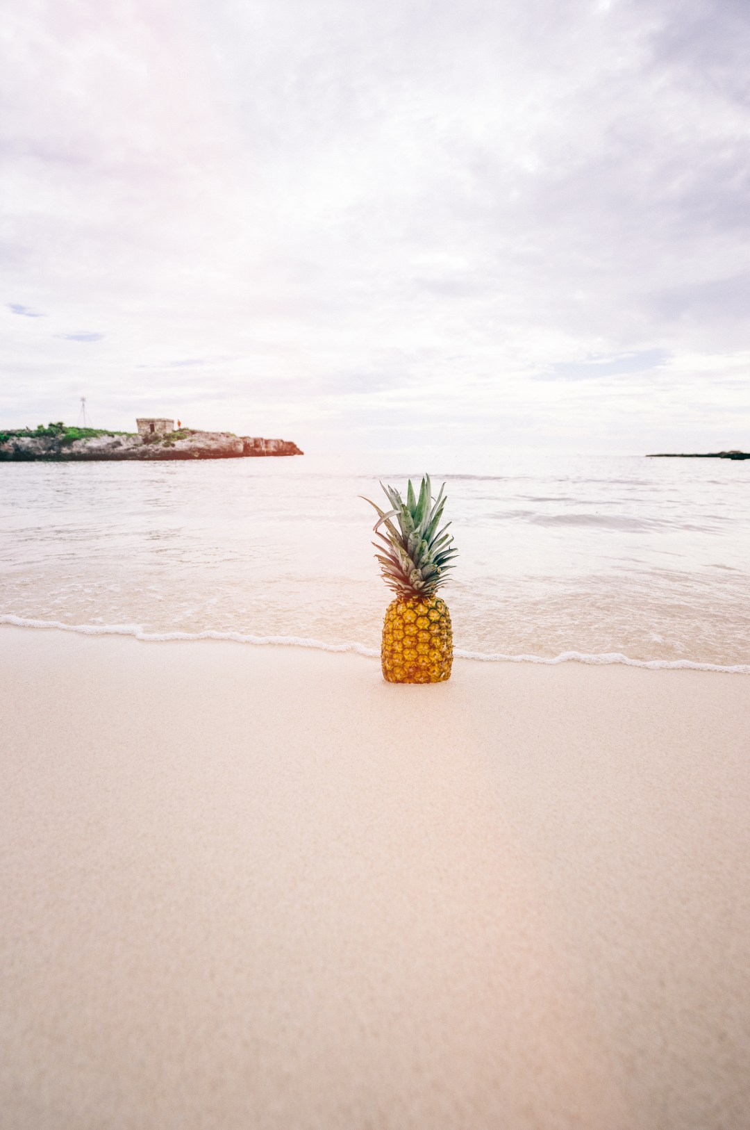 Quote Wallpaper Mac Pineapple In The Sand Photo By Pineapple Supply Co