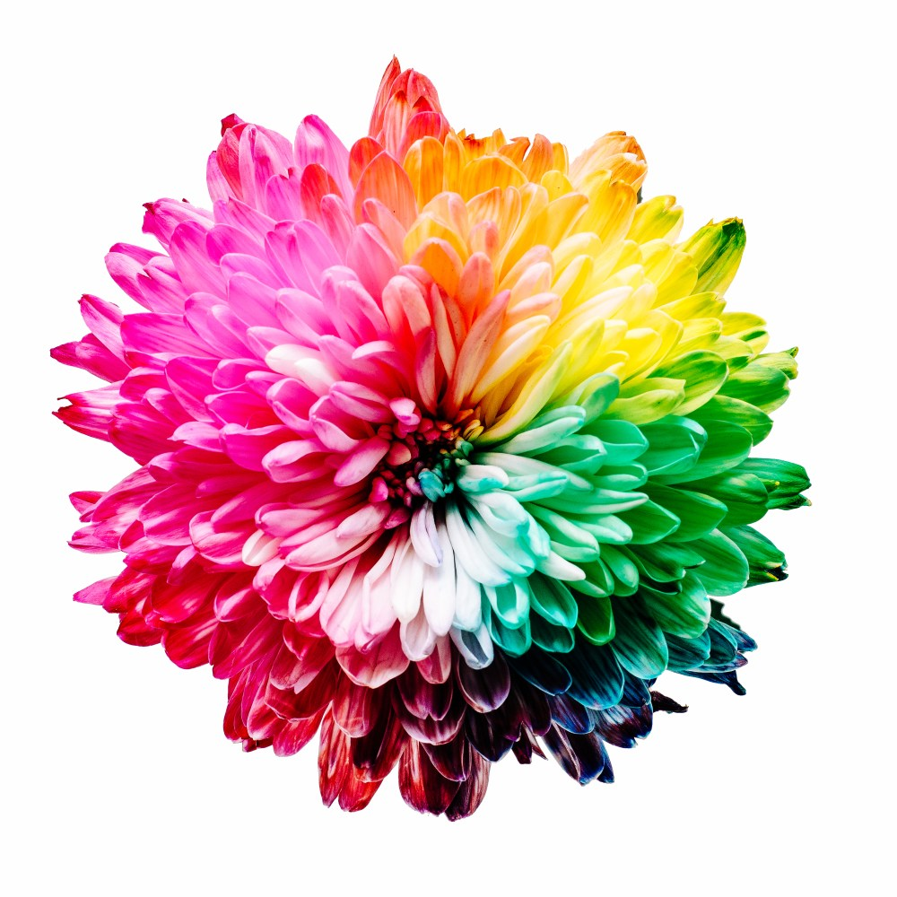 colorful pictures hd download