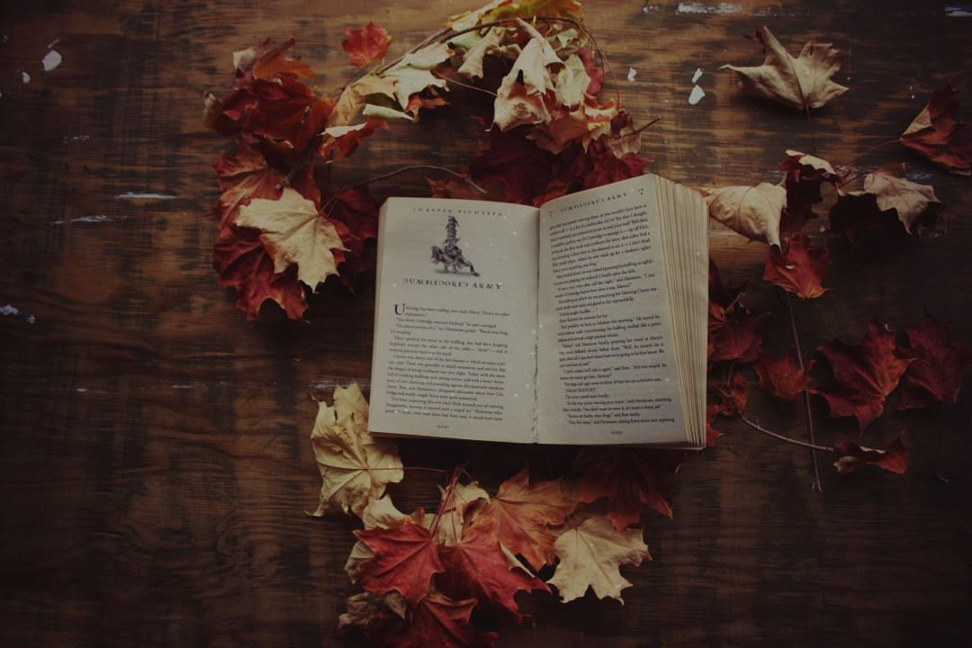 Fall Harry Potter Wallpaper Harry Potter In Autumn Photo By Jessica Fadel