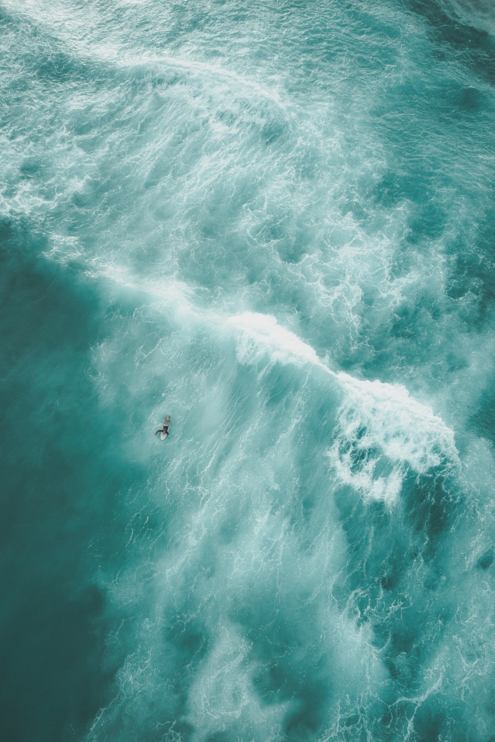 Free Fall Mobile Phone Wallpapers Download Android Wallpapers Unsplash