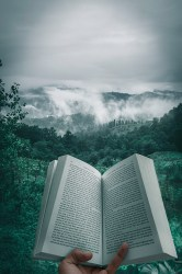 Book Pictures [HQ] Download Free Images on Unsplash