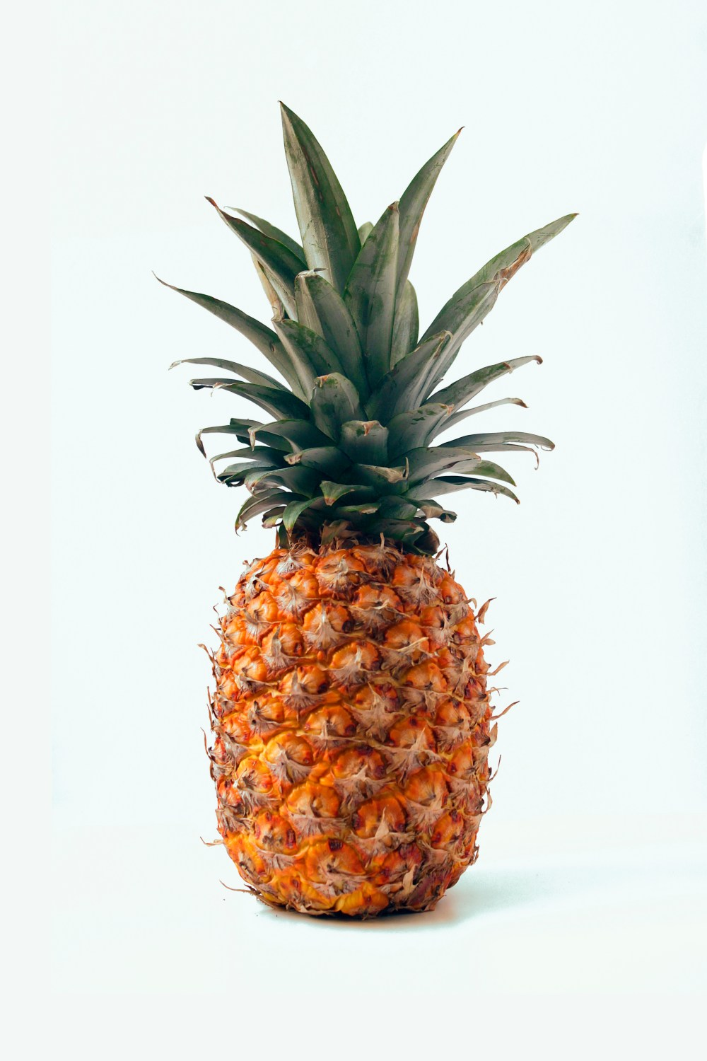 best 20 pineapple pictures