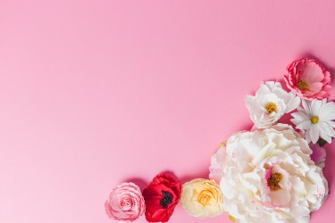 pink roses in clear glass vase photo Free Flower Image on Unsplash