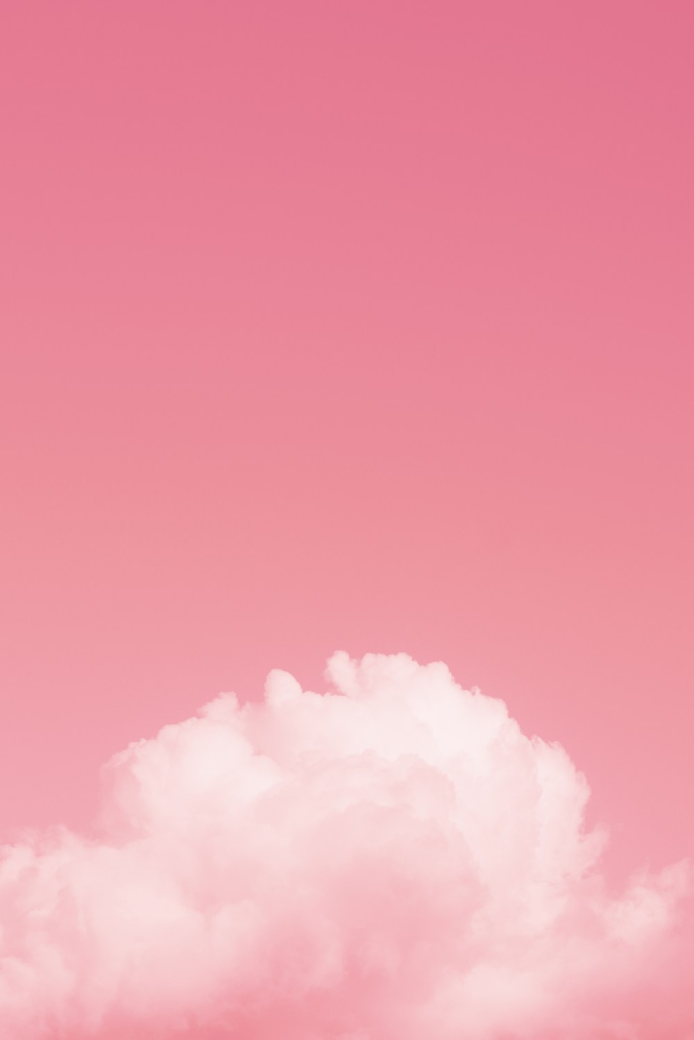 Background Cute Hd : background, Wallpapers:, Download, [500+, Unsplash