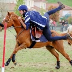 Et Art 6 Sentence Diagramming Exercises Le Pony-games à Orliénas