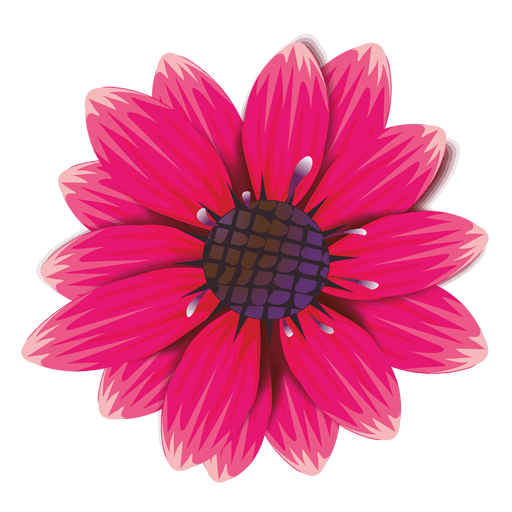 Animated Spring Flowers